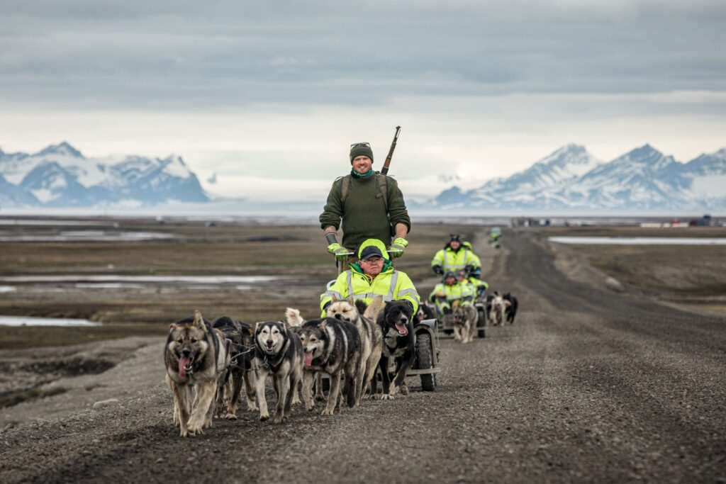 Dog sledding, dog sledge, dog sled