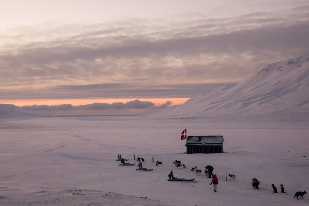 3-dagers ekspedisjon med hundeslede NO