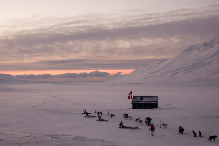 Expedition, dog sled, dog sledding, dog driving, Svalbard mushing