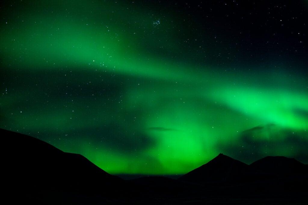 To års eventyr på Svalbard 1