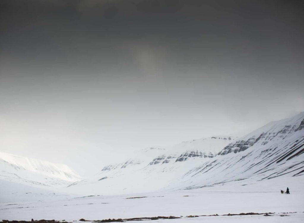 Hundekjøring i polarnatta NO
