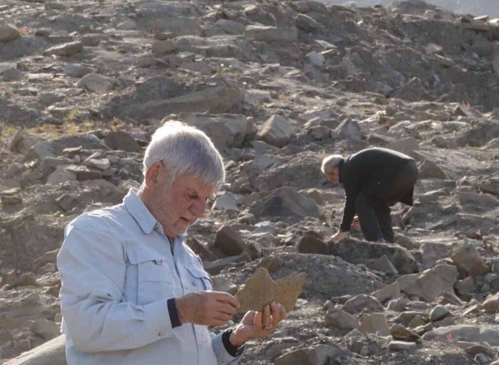 Fossiljakt med kløvhund NO